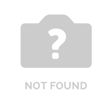 TRIMIT Partner of the Year - Qexpertise